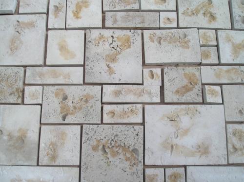 Stone Veneer In Lakeland Fl Diggerslist Com
